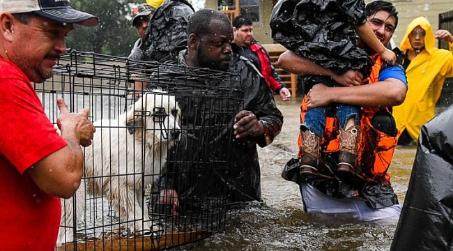 Harvey sets preliminary US rain record with 51.88 inches: National Weather Service