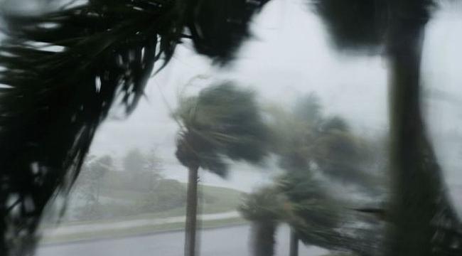 Floridada sokağa çıkma yasağı ilan edildi