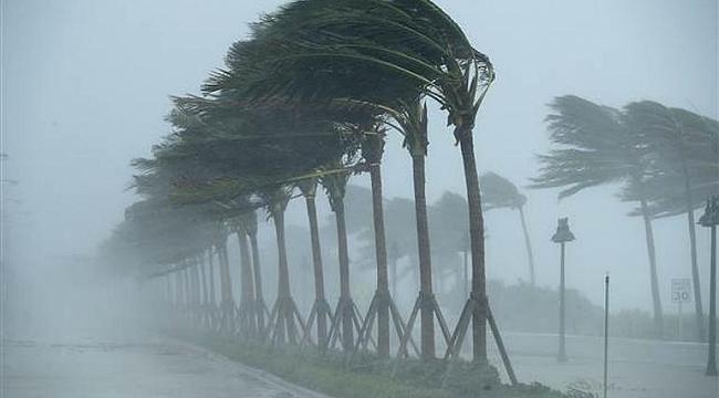 Son dakika! Irma kasırgası vurdu milyonlar karanlığa gömüldü... Yağmacılar ortaya çıktı!