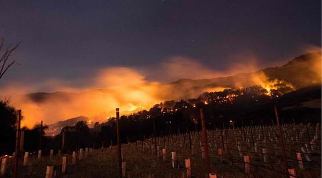 Kaliforniya'da 12 ayrı bölgede yangın