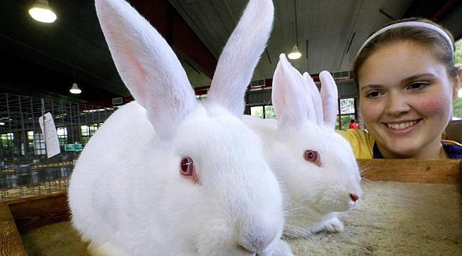 Sağlık Bakanlığı: Tavşan gibi Sevişin