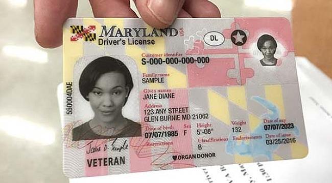 Maryland'ta Sahte Ehliyet Operasyonu