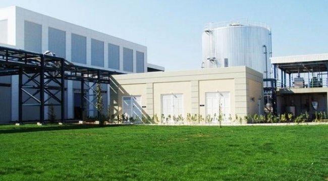 Türkiye'nin ilk özel rakı fabrikası satışa çıkarıldı