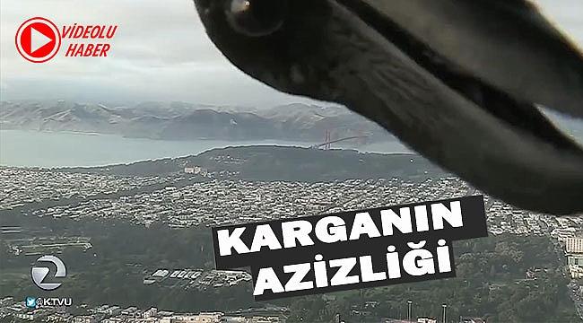 Karga TV Yayınını Sabote Etti