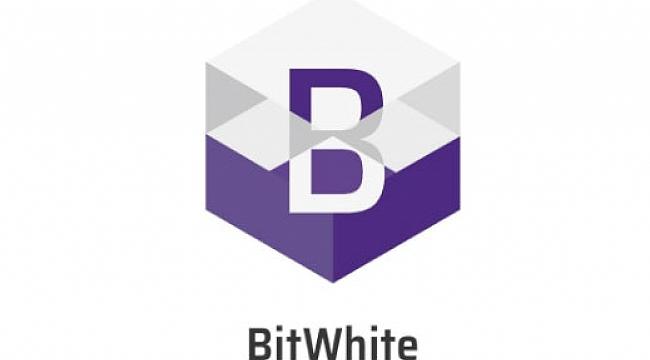 ABD Hisse Senetleri İlk Kez Bir Kripto Para Birimi(BitWhite) ile Satın Alındı!