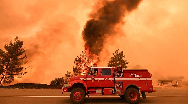 California'da Orman Yangını