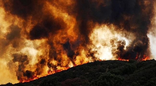 California'da Yangın: Bir şehir tahliye edildi