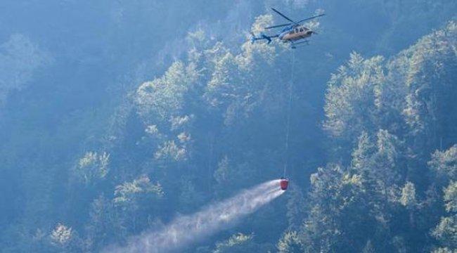 İsviçre'de küçük uçak ormanlık alana düştü