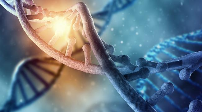 Çocuklara yönelik taciz DNA'yı etkiliyor