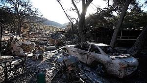 California'dan bin kişi Kayıp