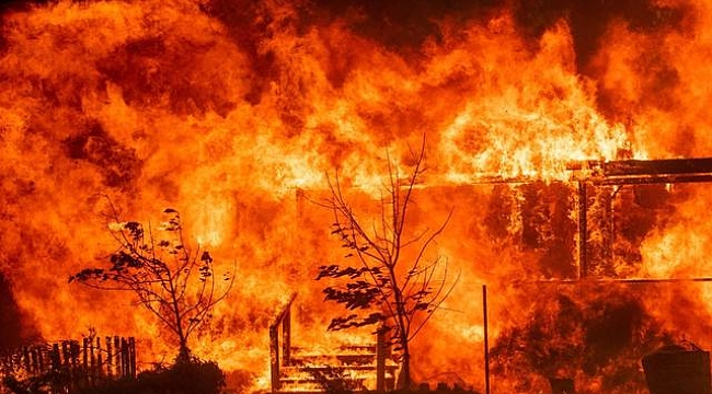 California Yangınının Bilançosu