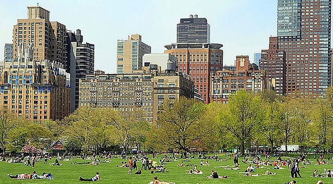 Central Park'ı Türk Şirket Yenileyecek