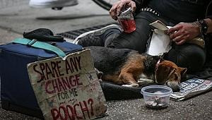 ABD'deki evsizlerin 2 yıl önce işi vardı