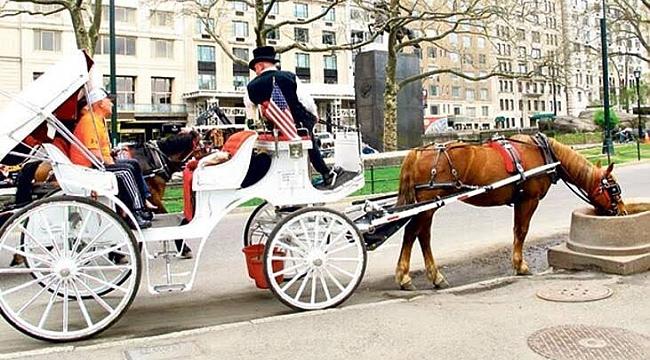 New York'un atlı faytonları Türklerin Elinde