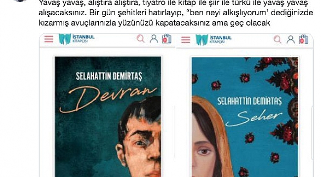 Nedim Şener Selahattin Demirtaş'a sert çıktı