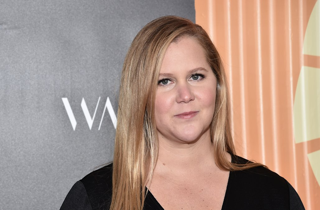 Amy Schumer shares IVF update, feels 'lucky' to ha