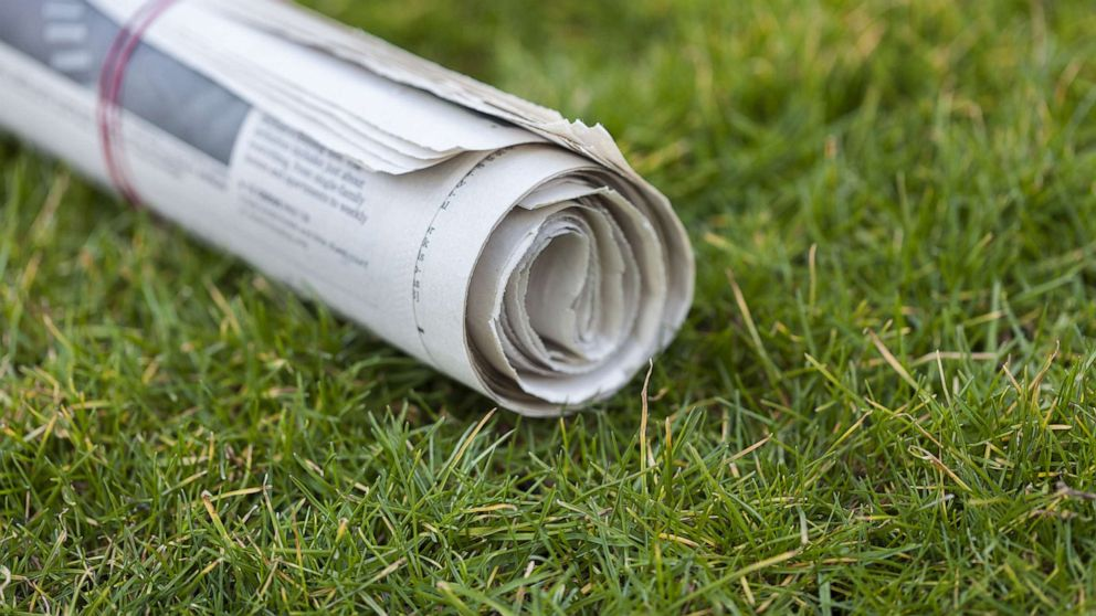 Two more former paperboys come forward to allege s
