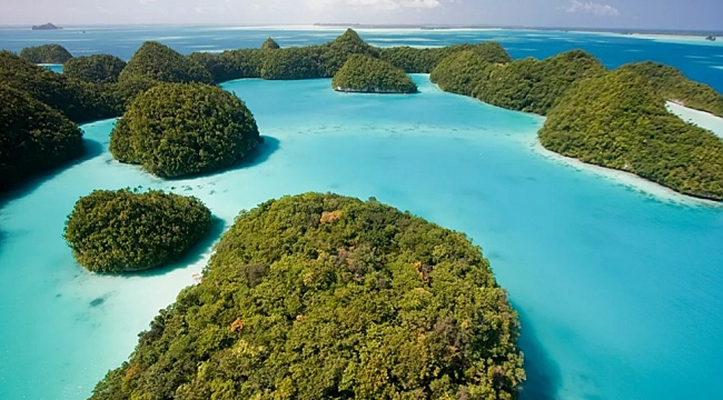 Palau Lideri, Amerikan Üssüne Talip Oldu