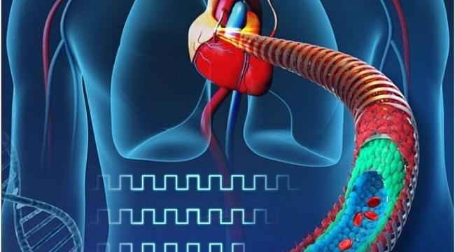 Bilim Insanları Elektronik Kan Damarı Üretti
