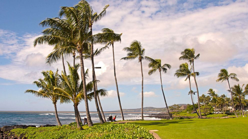 Hawaii couple arrested after boarded flight knowin