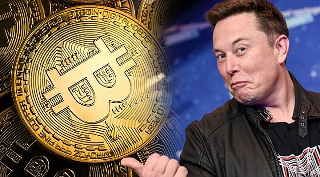 Elon Musk Yüzünden, Bir Gecede Battı