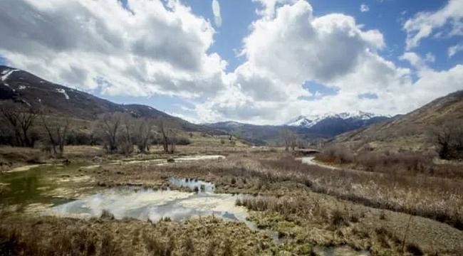 Utah'ta 5 Aydır Kayıp Kadın Ormanda Bulundu