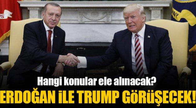 Erdoğan Trump ile Görüşecek